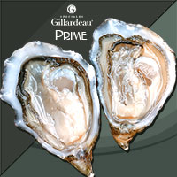 *Delivery* Gillardeau Prime (France) 6pcs