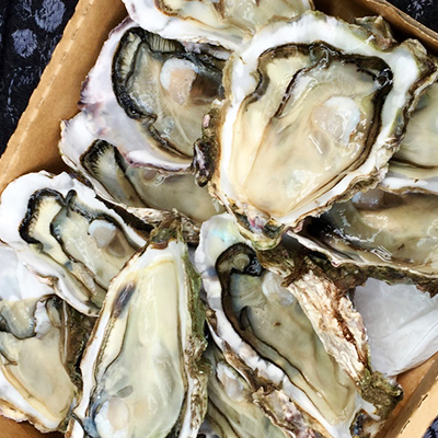 *Delivery* Pacific Rock Oyster x6