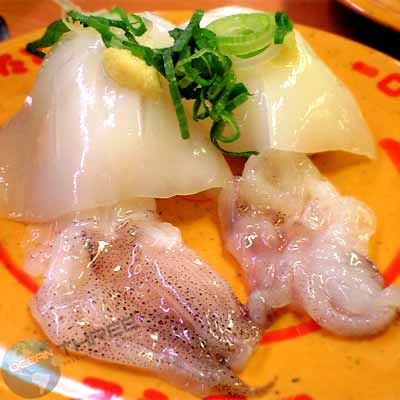 Thai Squid (Sashimi)