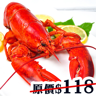 Canada Lobster (Cooked)